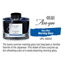 Asa-gao Morning Glory